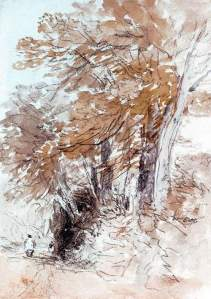 By Cox, D. - Sketch of trees beside a path