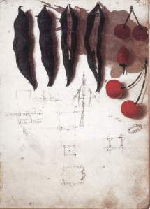 By Da Vinci - Fruits