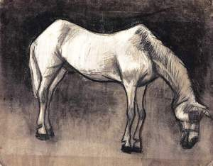 By Van Gogh - The white nag