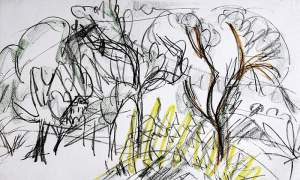 By Kirchner - Study of trees