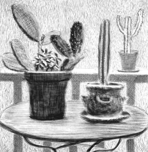 By Hockney - Study of three potted cactus