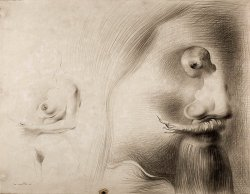 By Dalí - An optical vision of two women and a male face with a goatee